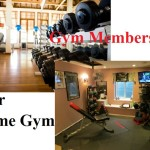 Which is Better: Gym Membership or Home Gym?